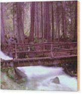 A Bridge To Paradise Wood Print