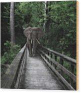 A Bull On The Boardwalk Wood Print
