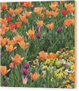 A Burst Of Spring Color Wood Print