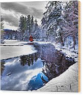 A Calm Winter Scene Wood Print