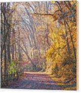 A Change Of Seasons On Forbidden Drive Wood Print