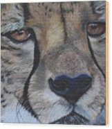 A Cheetah Wood Print