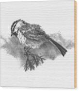 A Chickadee Named Didi Wood Print