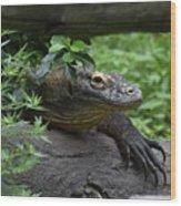 A Close Up Look At A Komodo Dragon Lizard Wood Print