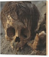 A Close View Of A Human Skull Wood Print