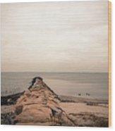 A Cold Compo Beach  Wood Print