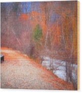A Colourful Winter Wood Print