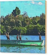 A Cormorant Cruise 2 Wood Print