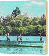 A Cormorant Cruise Wood Print