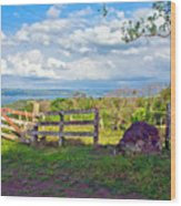 A Costa Rica View Wood Print