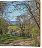 A Country Pathway In Northern England Wood Print