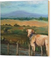 A Cow Up In Missouri Wood Print