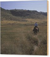 A Cowboy Looks For His Herd Wood Print