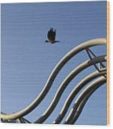 A Crow In Flight, Arhus, Denmark Wood Print
