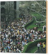 A Crowd Gathers Around Keenelands Wood Print