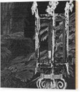 A Crown Of Thorns Wood Print