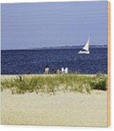A Day At The Beach - Martha's Vineyard Wood Print