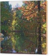 A Day At The Lake Wood Print