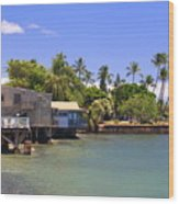 A Day In Lahaina Wood Print