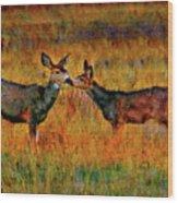 A Deer Kiss Wood Print