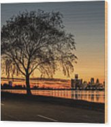 A Detroit Sunset - The View From Belle Isle Wood Print