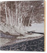 A Different World #1. Groove Of Trees Wood Print