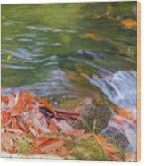 Flowing Water Fall Leaves Closeup Wood Print