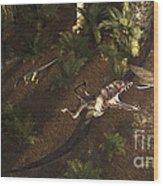 A Dimorphodon Pterosaur Chasing An Wood Print