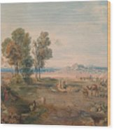 A Distant View Of Athens Wood Print