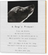 A Dog's Prayer In White  A Popular Inspirational Portrait And Poem Featuring An Italian Greyhound Wood Print
