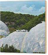A Dome Away From Dome Wood Print