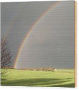 A Double Rainbow Wood Print