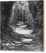 A Dreamy Path Wood Print