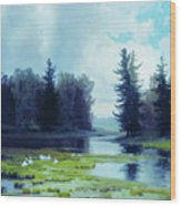 A Dreary Day At The Pond Wood Print