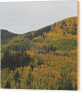 A Drive Throw The Forest In The Fall Wood Print