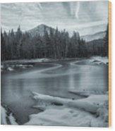 A Dry Winter 2 Wood Print