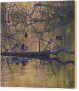 Ducks Love Spot Wood Print