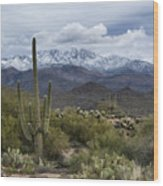 A Dusting Of Snow In The Sonoran Desert  Wood Print
