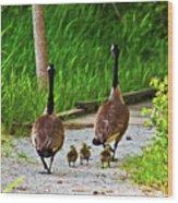 A Family Stroll Wood Print