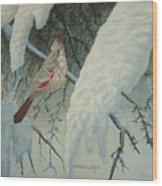 A Female Pyrrhuloxia  Wood Print