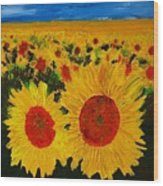 A Field Of Sunflowers Wood Print