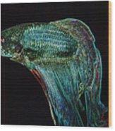 A Fish Called Poe 2 Wood Print