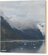 A Fjord In Alaska Wood Print