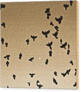 A Flight Of Grackles Circling The Moon Wood Print
