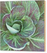 A Floral I Wood Print