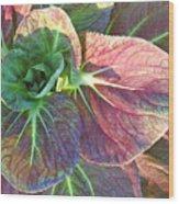 A Floral II Wood Print