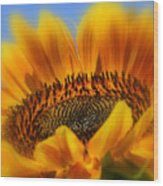 A Floral Sunset Wood Print