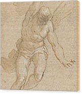 A Flying Angel Wood Print
