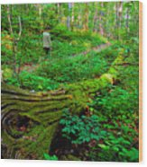 A Forest Stroll Wood Print