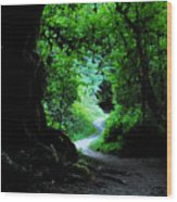 A Forest Trail Wood Print